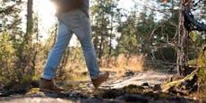 Wiener geht in Wald – dann muss Polizei-Heli ihn retten