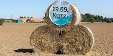 Wahlkampfkosten überschritten – ÖVP blitzt mit Klage ab