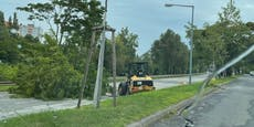 Baggerfahrer kracht in Baum – bleibt auf Straße liegen
