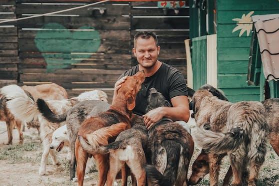 """Michael Midzan rettet mit seiner Frau Amra und dem gemeinsam gegründeten Verein """"Ein Herz für Hunde"""" gequälte und verwahrloste Hunde in der Stadt Bihac."""