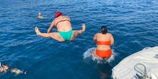 Platsch! Hier gehen Lugners Seepferdchen baden