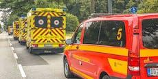 Hornissen-Angriff fordert acht Schwerverletzte