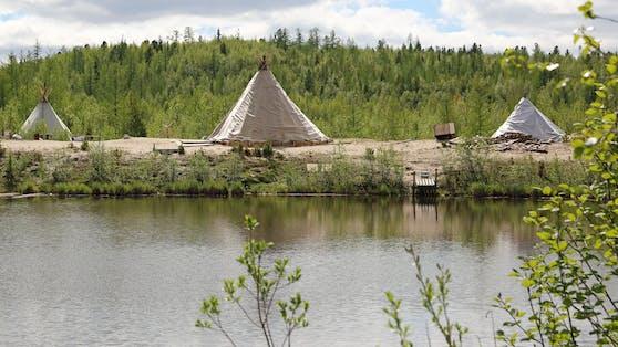 Die vier Rentier-Züchter hatten ihre Zelte am Rande eines Sees tief in der sibirischen Taiga aufgeschlagen. Symbolbild