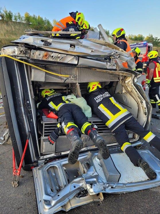 Bei dem Unfall wurden zwei Tiere und der Beifahrer verletzt.