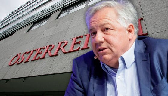 Wolfgang Fellner (66) steht erneut in der Kritik.