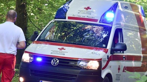Ein 54-jähriger Grazer wurde von einem herabstürzenden Baumstamm tödlich verletzt (Symbolbild)