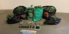 Starker Grasgeruch führte Polizist zu Indoorplantage