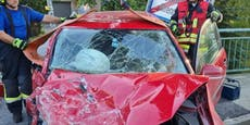 Pkw krachte gegen Transporter - vier Personen verletzt