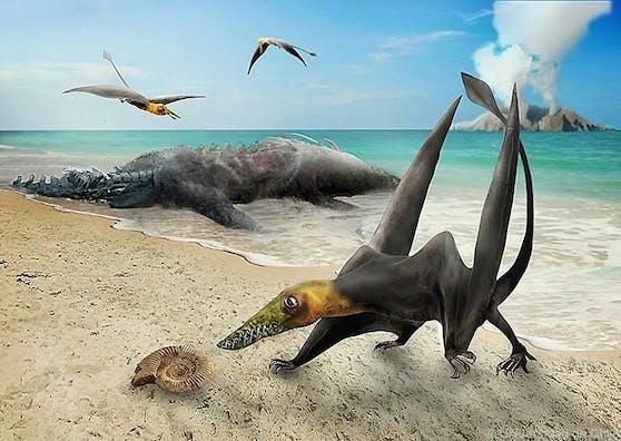 """Die Verbreitung dieser Gruppe dürfte laut Forschern """"größer als bisher bekannt"""" gewesen sein. Zuvor wurden Überreste nur auf der Nordhalbkugel gefunden."""