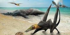 160 Millionen Jahre alter Flugsaurier in Chile gefunden