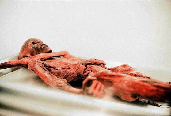 Ötzi dürfte an den Verletzungsfolgen eines Kampfes gestorben sein.