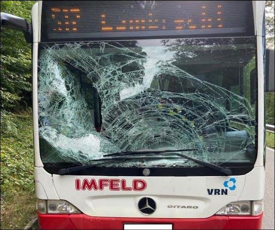 Der Bus hatte einen Sachschaden von mehreren tausend Euro - vom Tier fehlt jede Spur