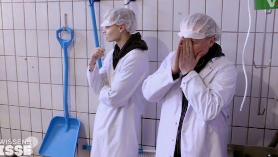 """Joey Kelly gerät in der umstrittenen VOX-Show """"GewissensBISSE"""" an seine Grenzen."""