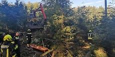 Mann bei Arbeiten von Baum getroffen - schwer verletzt