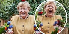 Der letzte Schrei – Merkel geht nicht leise in Pension