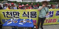 Südkorea schlägt vor, keine Hunde mehr zu essen
