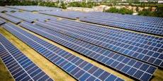 Wien Energie will Solarkraft-Leistung verzehnfachen