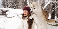 Mit einem Wolfsrudel auf Kuschelkurs