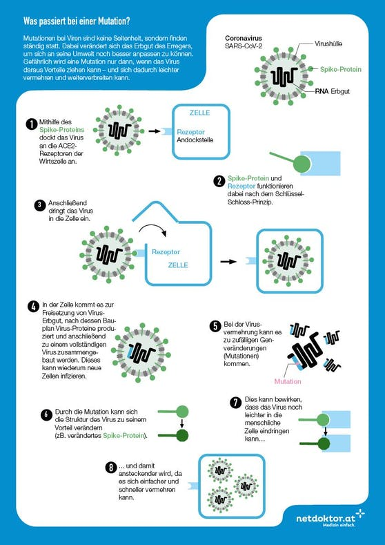 Endlich verständlich: Das geschieht bei einer Virus-Mutation