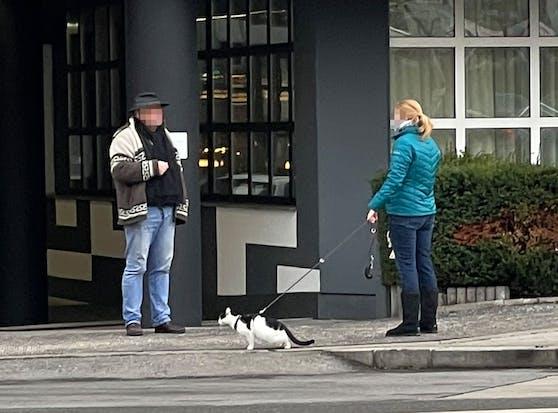 Die Katze scheint ein wenig ungeduldig zu sein.