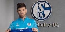 Wechsel perfekt! Kult-Stürmer soll Schalke 04 retten