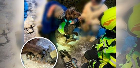 Die Feuerwehr konnte den Hund unversehrt befreien.