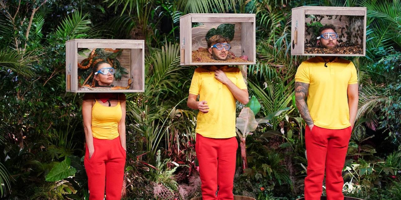Dschungelprüfung 2021