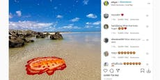 Buntes Seemonster am Strand von Australien entdeckt