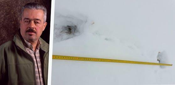 Wolfgang Sollberger hat die Elchspuren im Schnee entdeckt