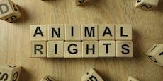 416.229 Unterschriften: Österreich zeigt Herz für Tiere
