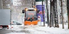 So kommt jetzt der Schnee nach Wien