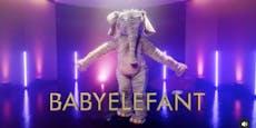 Der Babyelefant singt bald im Fernsehen um die Wette
