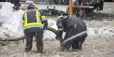 Tauwetter nach Schnee-Chaos – Hochwassergefahr steigt