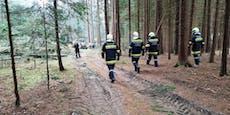 Landwirt bei Waldarbeiten in Jagenbach schwer verletzt