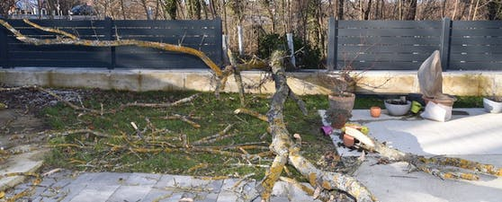 Die Feuerwehr Ebreichsdorf musste zu einem Sturmeinsatz ausrücken.