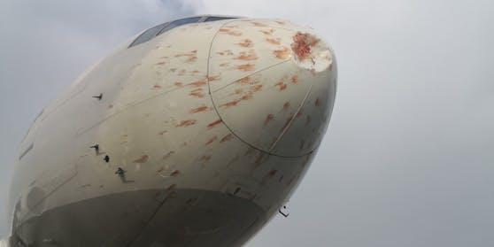 Eine Frachtmaschine von Turkish Airlines ist nach dem Start von Istanbul mit einem Vogelschwarm kollidiert.