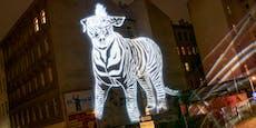 Darum erstrahlt in der Josefstadt nun eine Zebratigerin