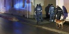 Paar verletzt vier Polizisten bei Vorführung