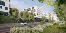 Ab dieser Woche sind neue Gemeindewohnungen zu haben