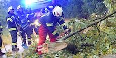 Unwetter-Warnung: Heftiger Sturm fegt über Wien