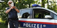 Wiens Polizei beinhart – über 550 Anzeigen und Strafen