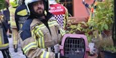 """Feuerwehr rettet Katze """"Funny"""" von Hausdach"""