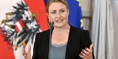 Mehr Geld für Familien stärkt BIP um 700 Mio. Euro