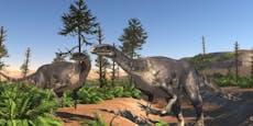 Die Dinos erobern ab heute das Naturhistorische Museum