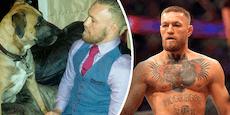 """""""Mir fehlt Kuscheln"""": McGregor trauert um seinen Hund"""