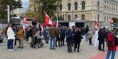 Wiener gehen gegen strenge Corona-Regeln auf die Straße