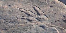 Mädchen findet Dinosaurier-Fußabdruck bei Spaziergang