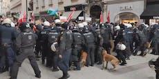 Video zeigt Hunde-Einsatz bei Corona-Demo