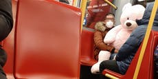 Wiener fährt mit rosa Teddybär am Valentinstag in Öffi