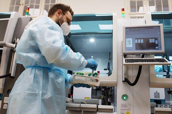Im Labor werden die Proben analysiert. Symbolbild.